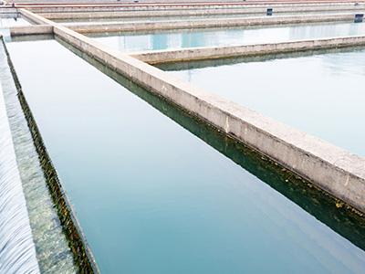 一体化污水处理设备的构造和优势是什么